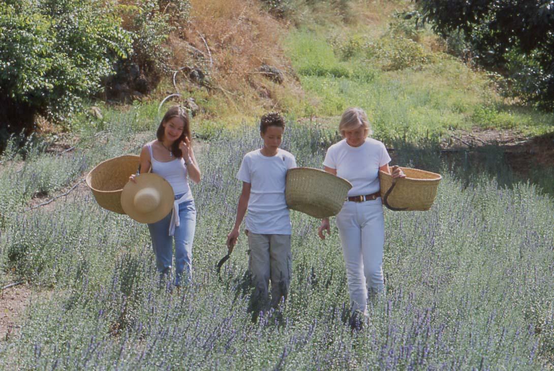 Die Geschichte von https://cdn.sensaterra.com/artisans/marie-de-mazet-story-picture-0c6d0604-7ace-cdf6-5de3-08d92b373b51.jpg