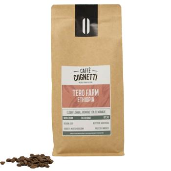 Specialty Coffee dell'Etiopia - Tero by Caffè Cognetti