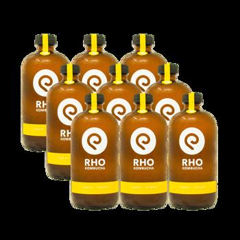 Zenzero / Lime Bio Kombucha 9x bottiglie 480ml by RHO KOMBUCHA