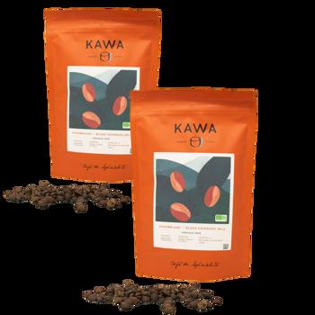 Blend Espresso Bio - Pack 2 × Chicchi Bustina 200 g
