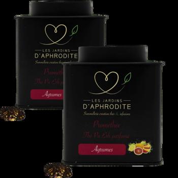 Prométhée by Les Jardins d'Aphrodite