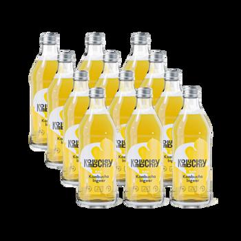Raw Ginger Bio-Kombucha 12x bouteilles 330ml - Coffret découverte 3,96 kg