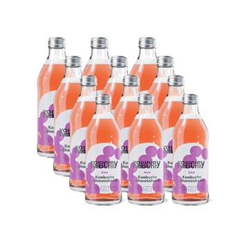 Raw Currant Bio-Kombucha 12x bouteilles 330ml - Coffret découverte 3,96 kg